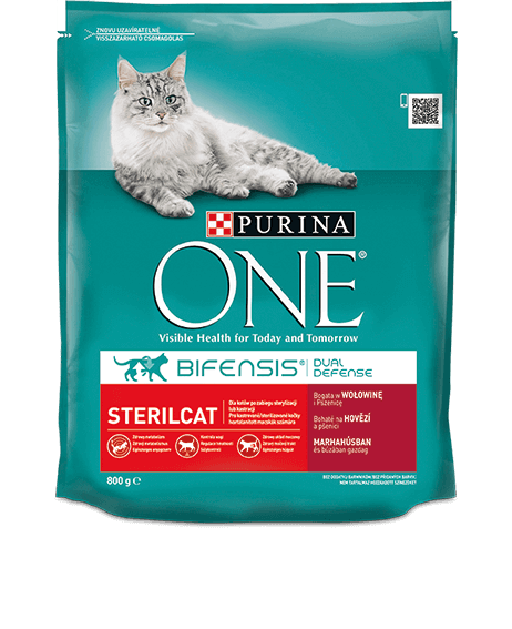 product_onecat_01_desktop (2).png