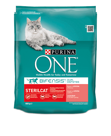 product_onecat_04_desktop.png