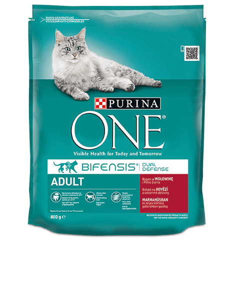 product_onecat_20_desktop-.png