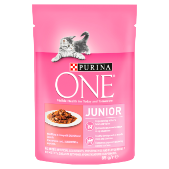 PURINA ONE JUNIOR Mini filetky s lososem a mrkví ve šťávě